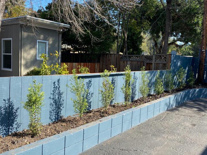 970 Elsinore Ct Palo Alto CA Home. Photo 27 of 29