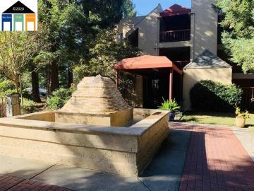 1310 Walden unit #6, Fountain Springs, CA