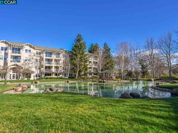 1860 Tice Creek Dr unit #1334, Waterfdnrt, CA