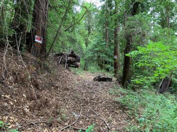 200 Margaret Dr, Boulder Creek, CA