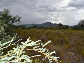 .23 Acre End Of Pinal Old Town, Willard Add, AZ