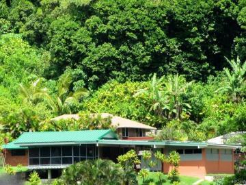 3577 Pinao St Honolulu HI Home. Photo 1 of 19