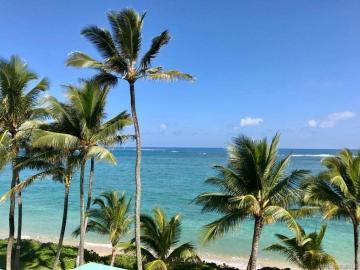 53-567 Kamehameha Hwy unit #502, Punaluu, HI