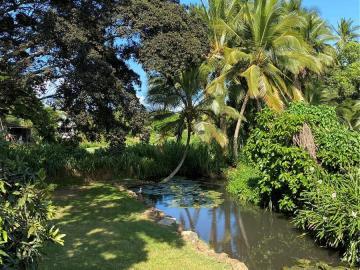 66-351 Paalaa Rd, Waialua, HI